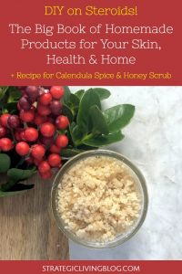 Big Book of Homemade Products by Jan Berry | Strategic Living Blog